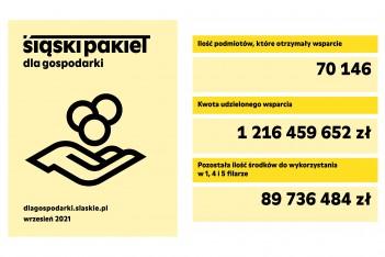 pliki z informacją o Śląskim Pakiecie dla Gospodarki