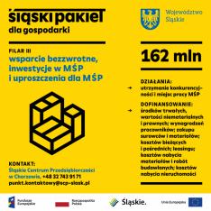 Obraz przedstawia podstawowe informacje o trzecim filarze Śląskiego Pakietu dla Gospodarki